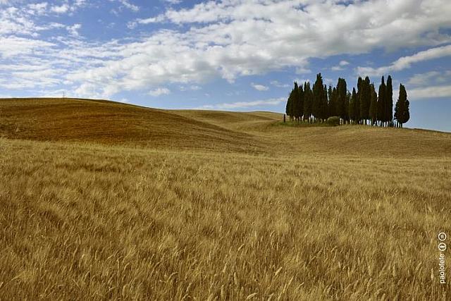 """Veduta della della """"Via Cassia"""" tra Toscana e Lazio"""